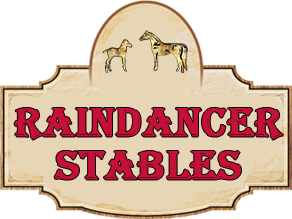Raindancer Stables